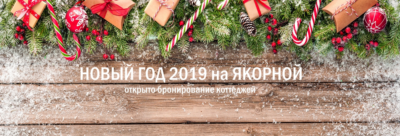 коттеджи на новый год 2019 лен область и карелия